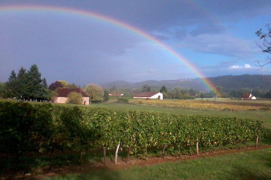 Arc-en-ciel sur les vignes du Domaine de la Vitrolle